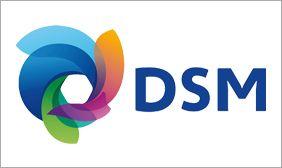 Team building Dsm biosolution